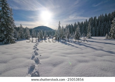 Footprints on fresh snow and snowy landscape - stock photo