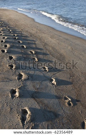 Footprints on the beach, early morning