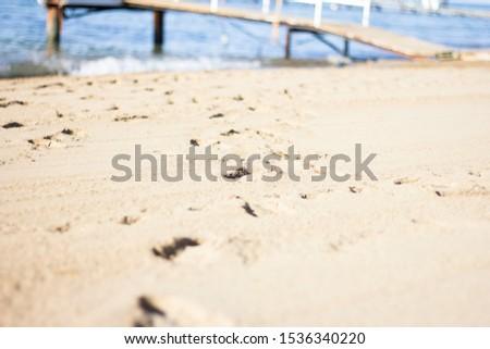 Footprints on the beach leading to the sea Сток-фото ©