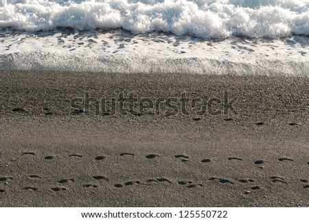 footprints on the beach near the sea