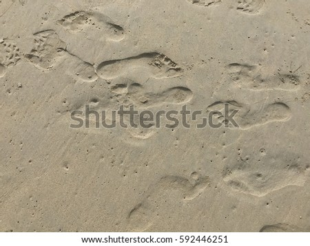 Footprints on the beach top view