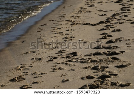 Footprints on the sand of a tranquil beach on a summer day