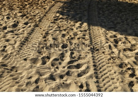 footprints on the shores of the Mediterranean #1555044392