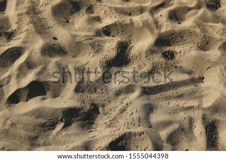 footprints on the shores of the Mediterranean #1555044398