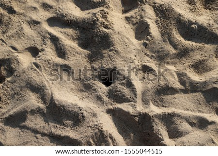 footprints on the shores of the Mediterranean #1555044515