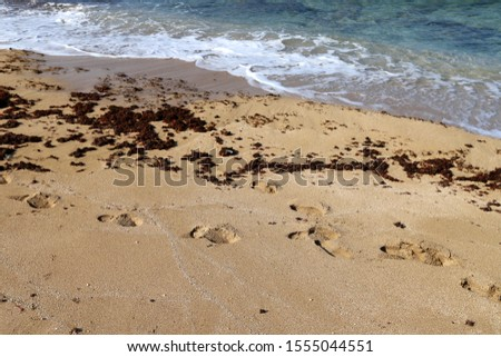 footprints on the shores of the Mediterranean #1555044551