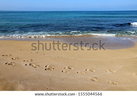 footprints on the shores of the Mediterranean #1555044566
