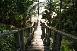 Footprints POV walking down downstairs wooden boardwalk stairs steps leading beach shore coconut palm trees seaside.Person walking barefoot wooden boardwalk sea sunlight.