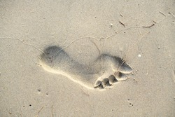Footprints walking on the beach by the morning , with copy space text