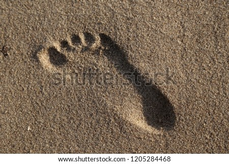 foots imprint in sand on the beach in summer #1205284468