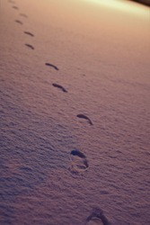 footsteps in the morning snow, with the morning light