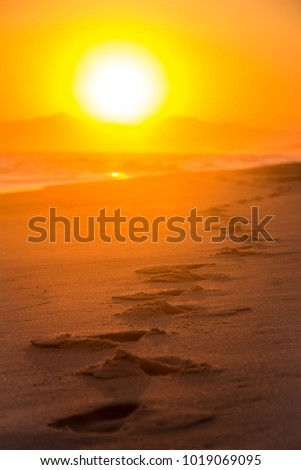 Stock Photo Footsteps in the sand during sunset on the beach