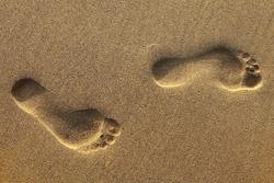 footsteps on beach in sandy