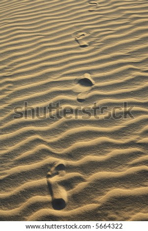 footsteps on the ripples of sand dune of cumbuco in ceara state brazil