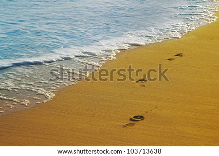 Footsteps on the sand and wave, caribbean coast