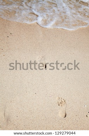 Footsteps on the sand of the beach