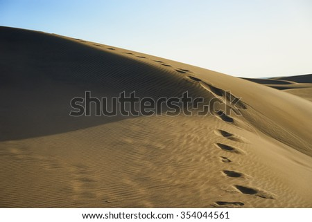 Footsteps on wavy dunes in a wide desert under blue sky in Gran Canaria / Footsteps on wavy dunes in a wide desert under blue sky next to beach / Desert-like beach in the south of Gran Canaria #354044561