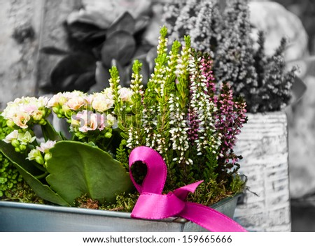 For special one! Flowers arrangement with pink bow in metal box. Creative gift idea.