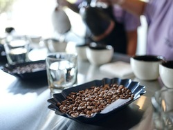 For the love of coffee. Close up shot of process of coffee cupping. Hot water is poured onto freshly roasted and ground beans directly in cups. Selective focus. Horizontal shot