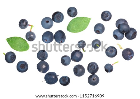 Foraged wild bilberries and blueberries (Vaccinium myrtillus fruits), top view #1152716909