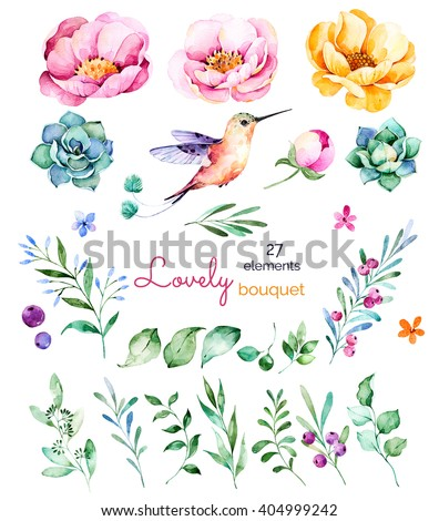 Foral collection with flowers,roses,leaves,branches,berries,succulents, hummingbird and more.Colorful floral collection with 27 watercolor elements.Set of floral elements.Lovely Bouquet collection