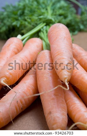 Forefront of  fresh carrots with green tops