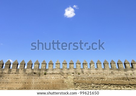 forefront of the ancient city walls of Cordoba, Andalucia, Spain