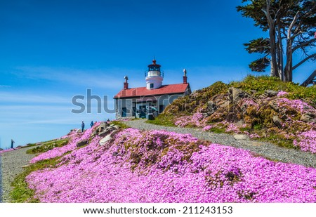 Foreground view of the Battery Point Lighthouse in Crescent City, CA