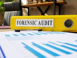 Forensic audit results in the yellow folder and papers.