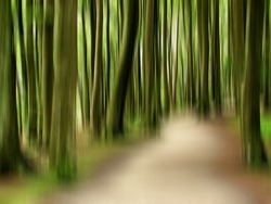 Forest abstract trees art background