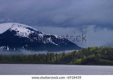 forest against dramatic background in Alaska