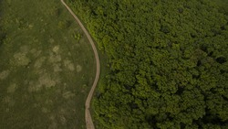 Forest and field with a trail aerial photography