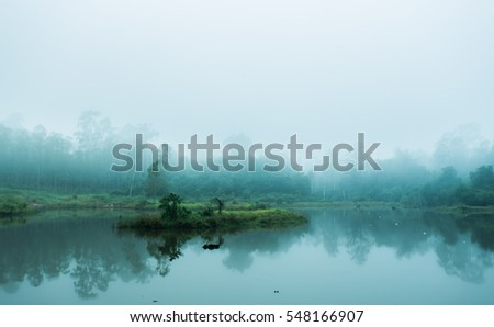 Forest and fog lake. #548166907
