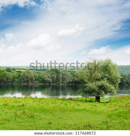 forest and meadow on the banks of the River