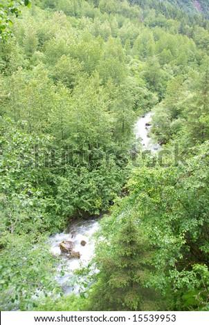 Forest and mountain stream,Dewey Lakes trail,Juneau,Alaska