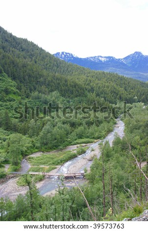 Forest and mountain stream, Perseverance Trail,  Juneau, Alaska