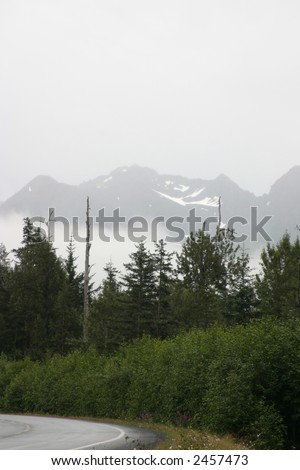 Forest and Mountains in Alaska
