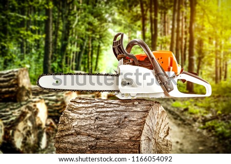 Forest and photo of chainsaw