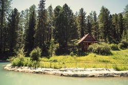 Forest and small house in it in summer day. Wooden two-storey cottage. Cabin in the woods. The tourist base for a stay in the forest.
