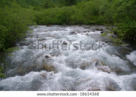 Forest and white water rapids,Dewet Lakes trail,Juneau,Alaska