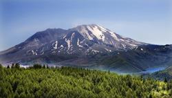Forest Blue Lake Snowy Mount Saint Helens Volcano National Park Washington