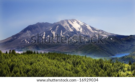 Forest Blue Lake Snowy Mount Saint Helens Volcano National Park Washington