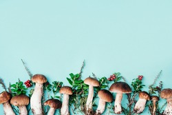 Forest boletus mushrooms on blue background. Top view. Creative food pattern. Copy space. Autumn harvest concept. Fresh picked Porcini mushrooms and space for your text.