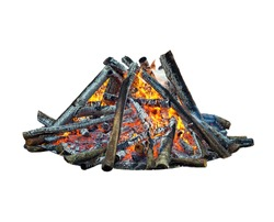 Forest bonfire, isolated on white background.