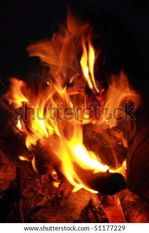 Forest campfire - stock photo