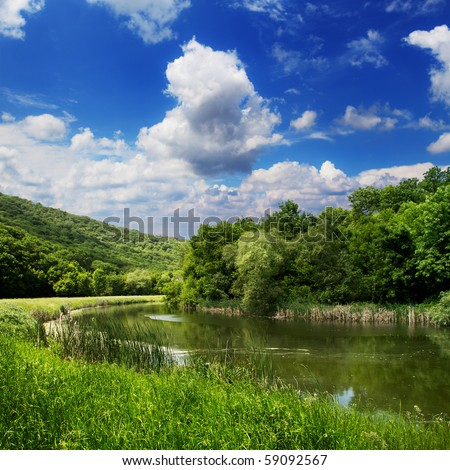 Forest clearing in beautiful countryside scene.