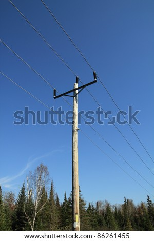 forest electrical post over blue sky
