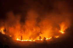 Forest fire, several hectares of pine trees burned during the dry season in June 2013 in Tele-Samosir Lake Toba (Danau Toba) North Sumatra (Sumatera Utara) Indonesia