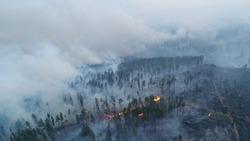 Forest fire. Shooting from a drone. Irkutsk region.