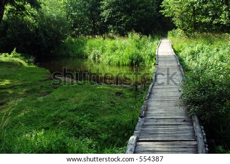 Forest Footbridge - summer landscape